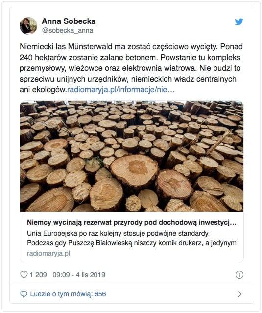 Anna Sobecka - 240 hektarów lasu wycięte