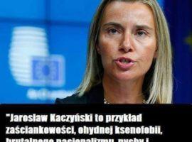 Federica Mogherini mocno o Jarosławie Kaczyńskim? To fake