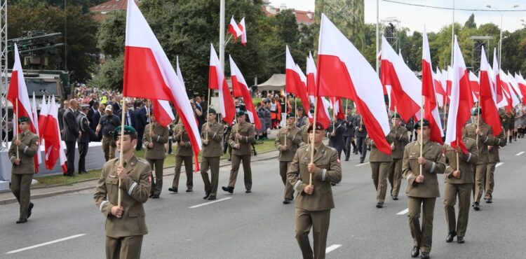 Rosyjskie trolle wzięły na cel Wojsko Polskie