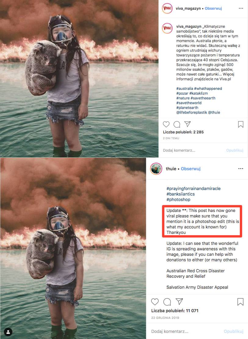 Dziewczynka, koala, fake news