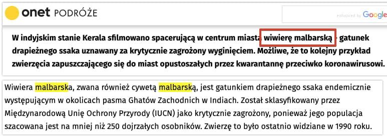onet - wiwiera malabarska - gatunek uznany za wymarły