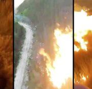 Wyciekły filmy z umyślnych podpaleń lasów? To fake news